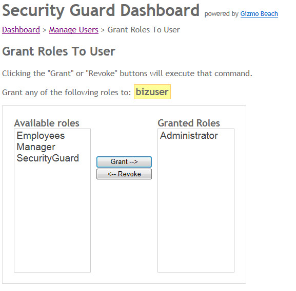 grant roles to user